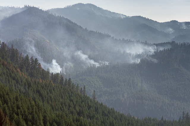 Smoke rises over the densely packed Umpqua National Forest