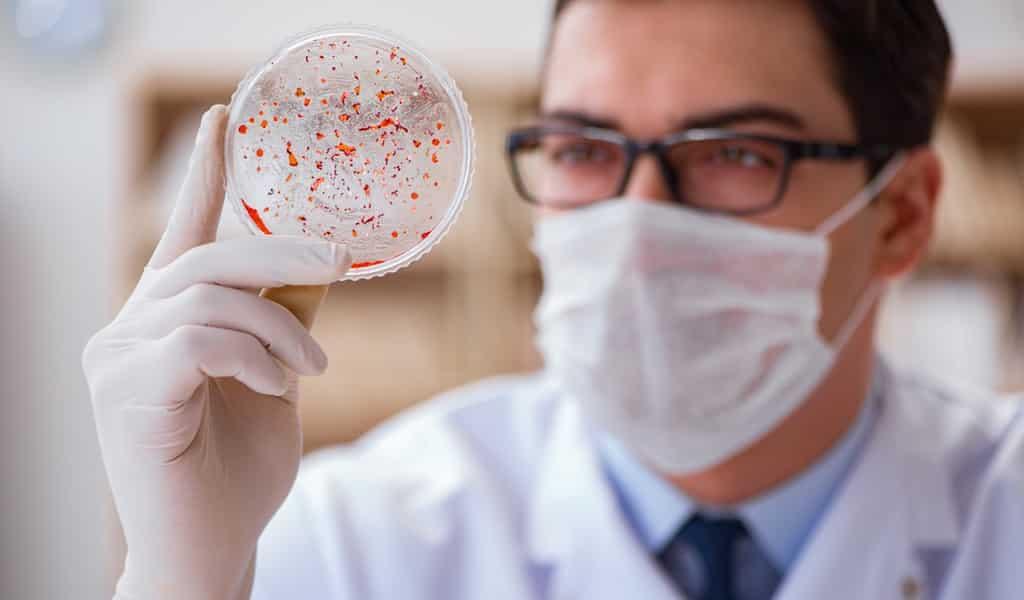 identification-rapide-des-bactéries-multirésistantes