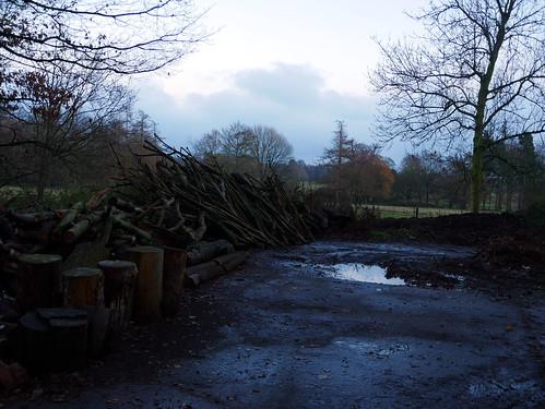 Log burning area