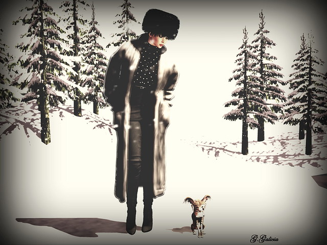 Mrs. Zhavago takes the dog out