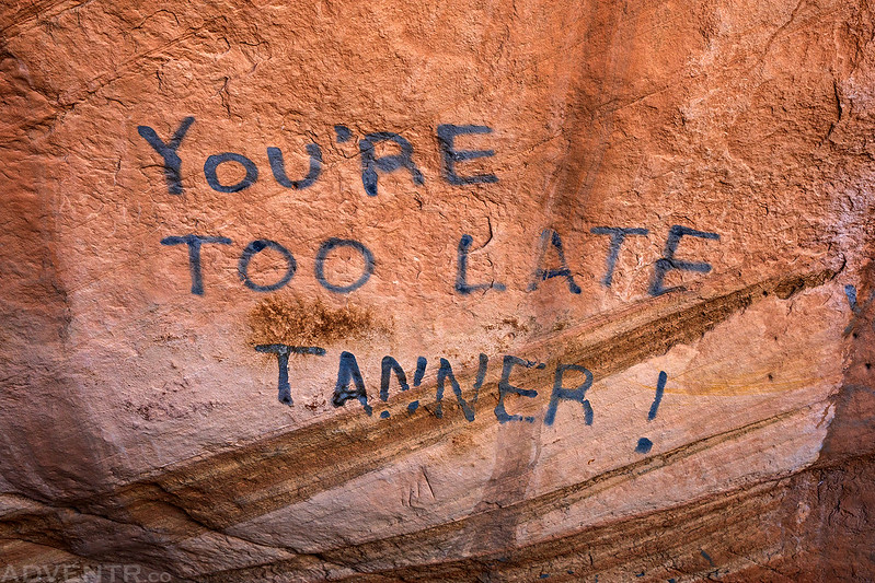 You're Too Late Tanner!