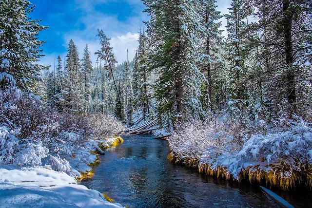Romancing the Creek