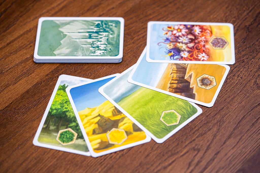 Kingdom Builder boardgame juego de mesa