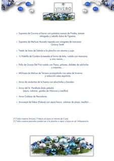 Navidad/S.Esteban - Vivero - 2os