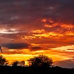 Golan sunset
