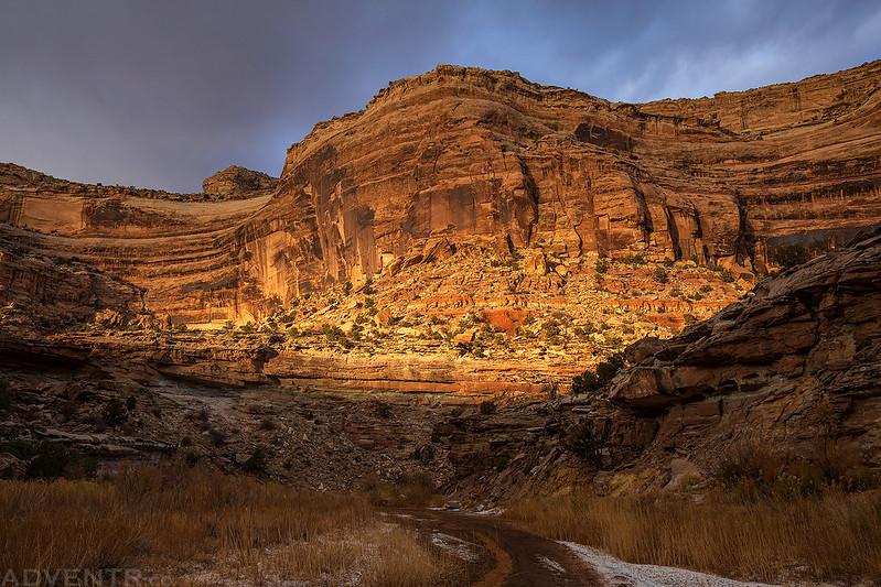 Cane Wash Canyon Wall