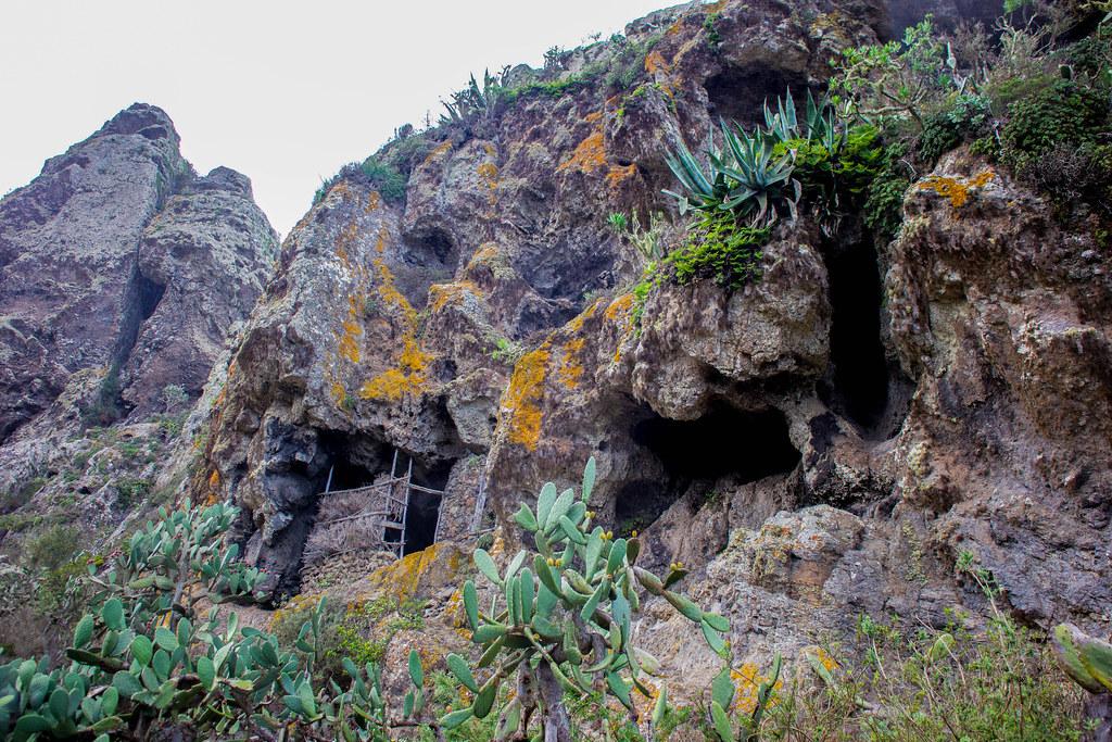 Corrales de animales en Chamorga
