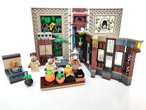 LEGO Harry Potter Hogwarts Moments: Herbology Class (76384)