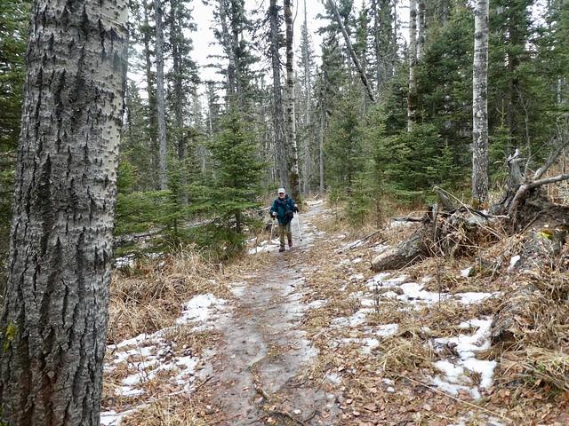 Brown-Lowery Provincial Park Perimeter Plus Hike -  Ben on Chickadee Trail