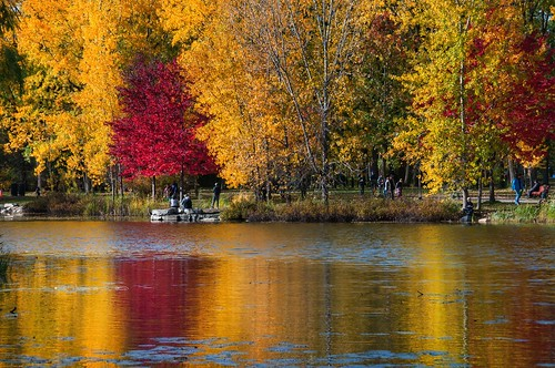 valterb view landscape light lake leaves colors colour canada color red yellow nikond90 nikkor nature water waterreflection reflection