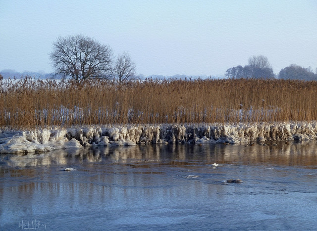 Winter am Fluss VI
