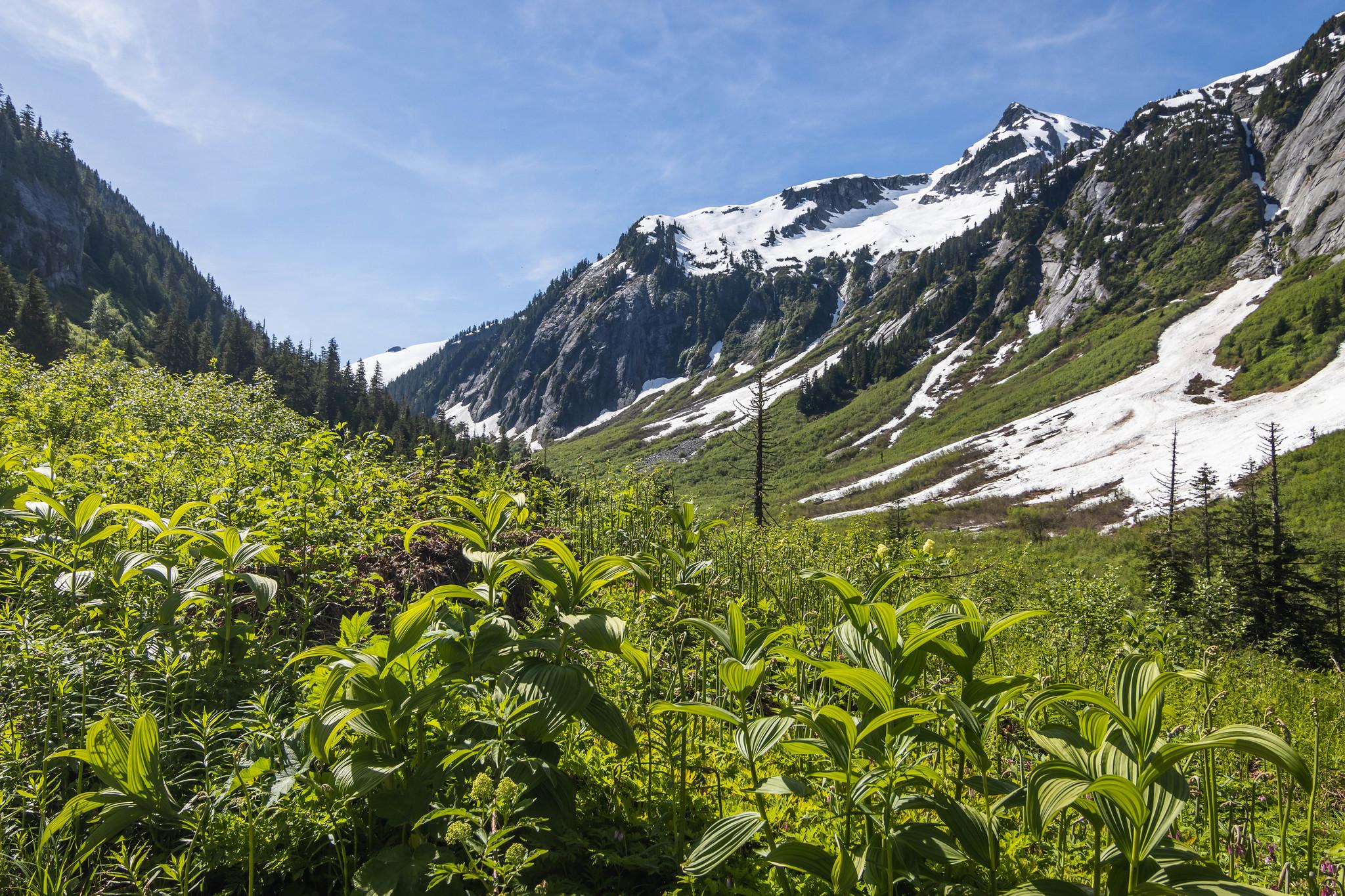 Hannegan Pass through Ruth Creek Valley