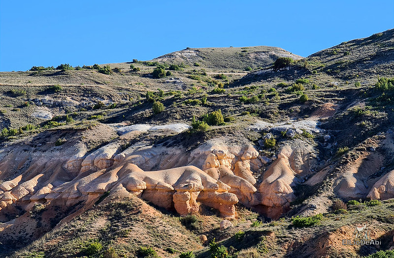 Arizona burgalesa desde Tobes y Rahedo a Valdearnedo (12)