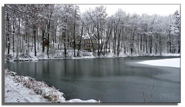 Winter landscape - frozen pond (Explore December 10, 2020)