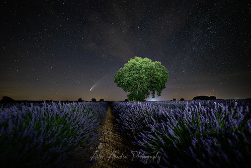 Neowise 2020 lavanda | by Aitor Abadia Photography - Fotoneoo