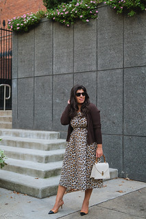leopard dress, brown ribbed cardigan, woven toe cap slingbacks, cream croc purse-2.jpg | by LyddieGal