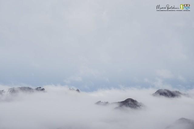 Parco Antola - Rocche del Reopasso