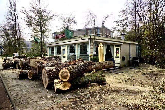 Mooie bos hout voor de deur