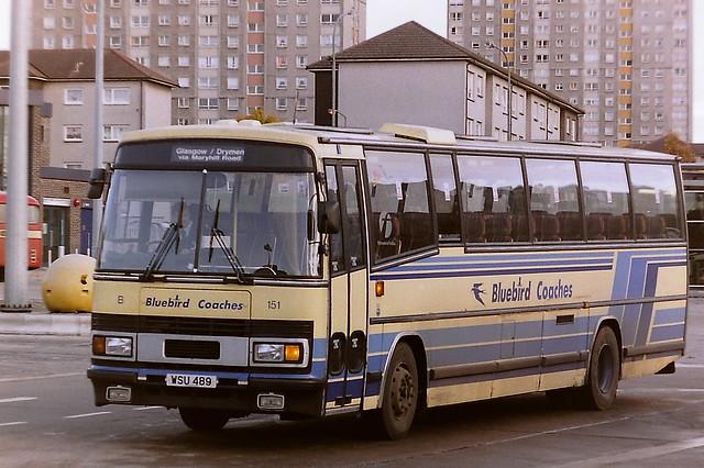 MIDLAND BLUEBIRD B151 WSU489 A22GBC