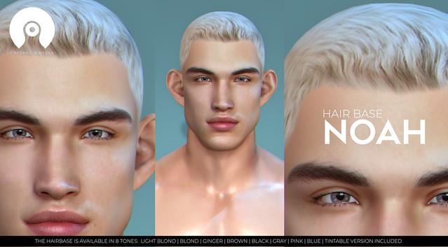 Hair Base NOAH