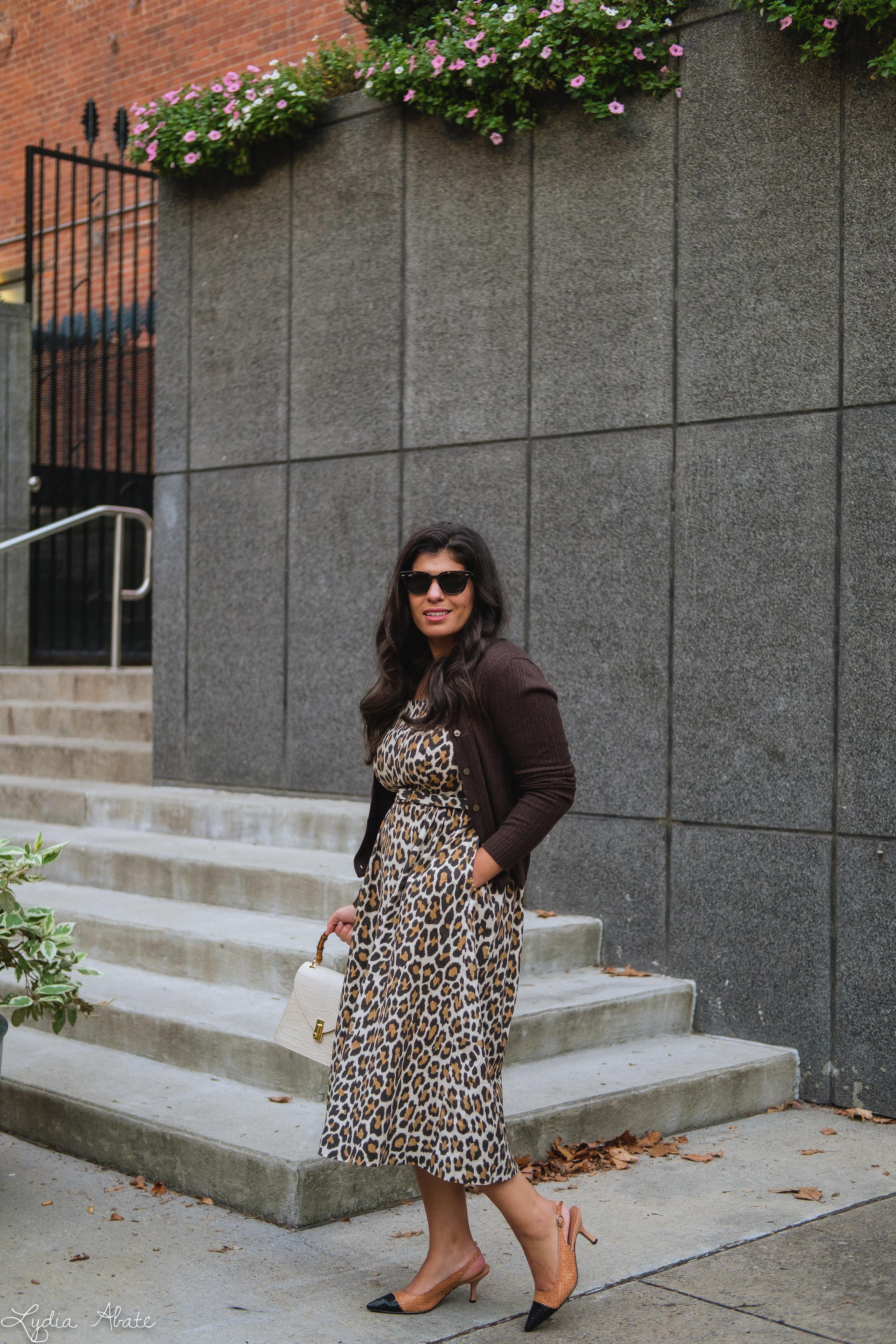 leopard dress, brown ribbed cardigan, woven toe cap slingbacks, cream croc purse-7.jpg