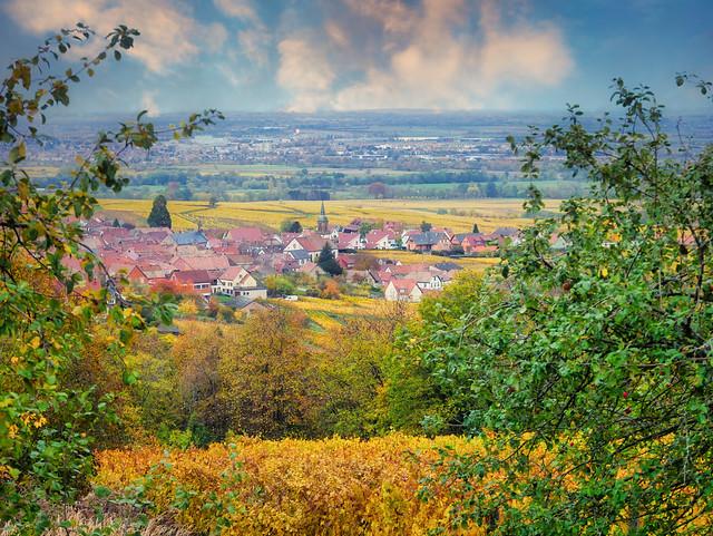 🇫🇷 route des vins d'Alsace (France)