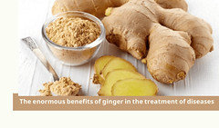 The enormous benefits of ginger in the treatment of diseases (2) (1)