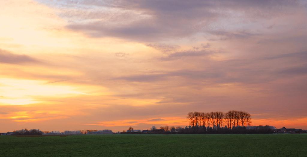 Polder in Zeeland - The Netherlands