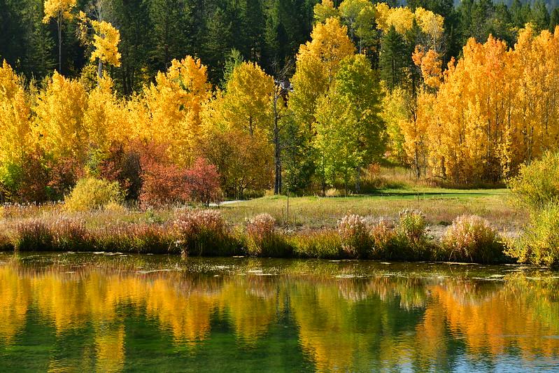 Юта-Айдахо-Орегон краски осени 2020