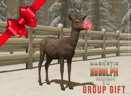 Magnetic - Dec Group Gift