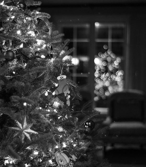 Christmas reflections.
