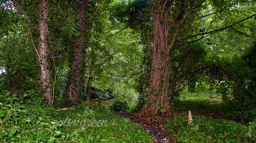 Holmes Park, Luddendenfoot