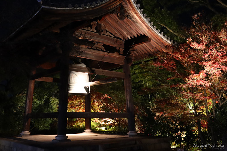 Canon EOS Kiss M2 Shooting in Kyoto