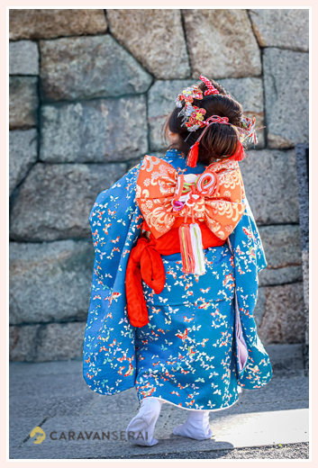 七五三 ブルーの着物を着た3歳の女の子の後ろ姿