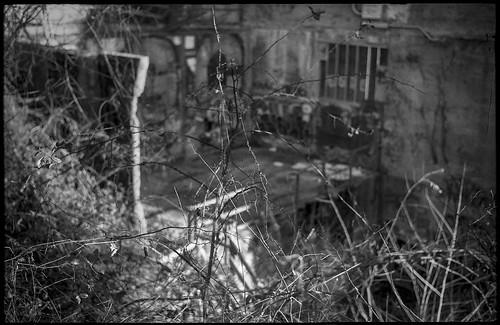 lookingdown thicket barren architecture abandoned decayed urbanlandscape riverdistrict asheville northcarolina anscosupermemar fomapan200 moerschecofilmdeveloper 35mm 35mmfilm film analog monochrome monochromatic blackandwhite rangefinder