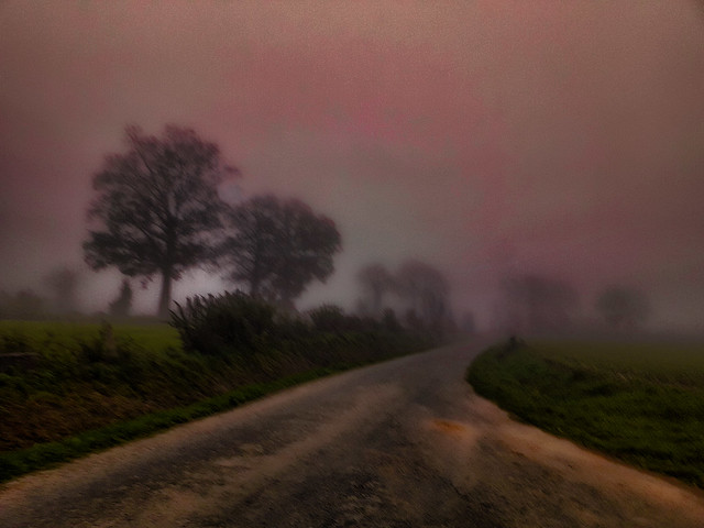 Route brumeuse, foggy road.