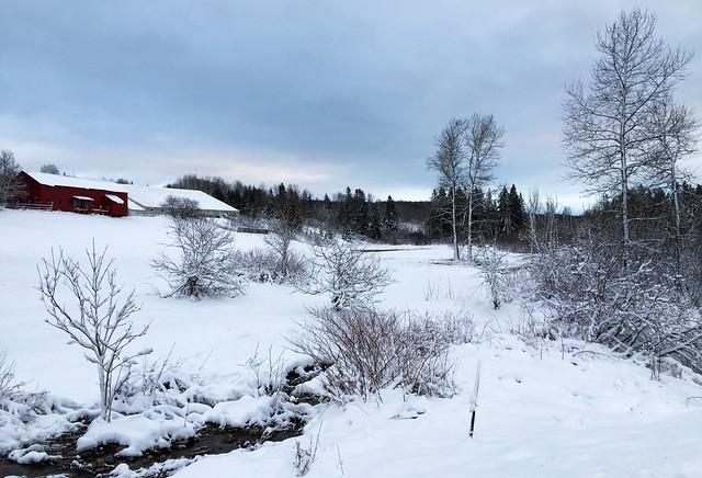 Winter on a Farm