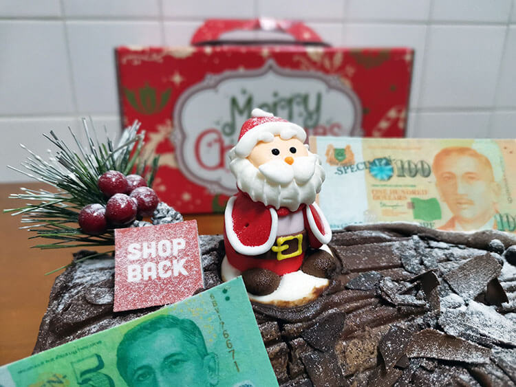 Christmas log cake
