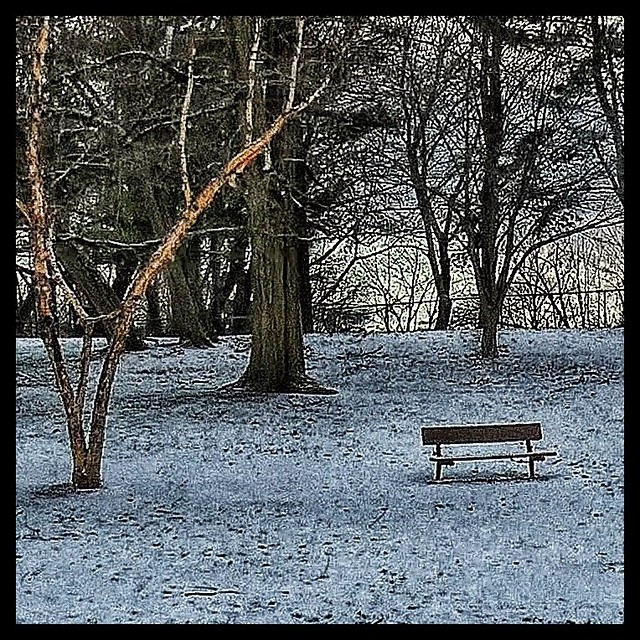 Loneliness in the park.