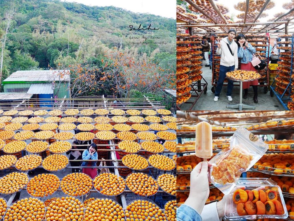 新竹新埔一日遊景點推薦味衛佳柿餅觀光農場免費參觀曬柿子季 (4)