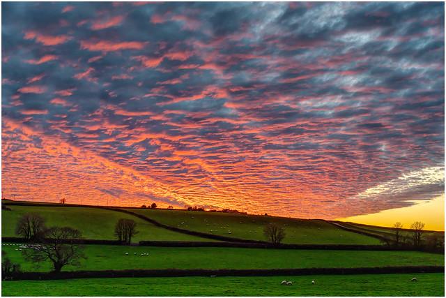Cornish Sundowner ...