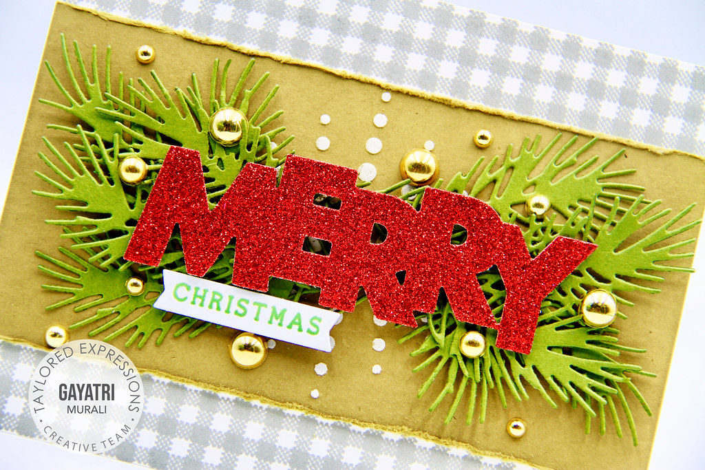 Merry Christmas card1 closeup1