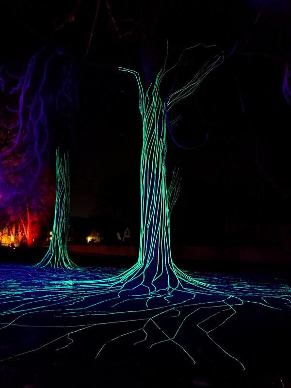 Árboles con luces en el parque Minnewater