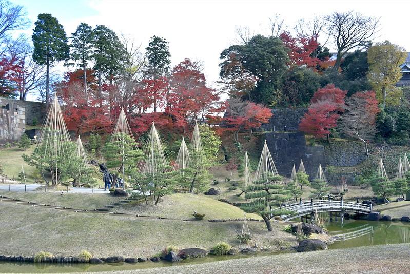 玉泉院丸庭園の紅葉