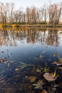 Fall landscape along the shore | by Classicpixel (Eric Galton) Photography Portfolio