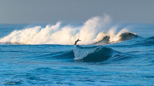 Surfs up 2