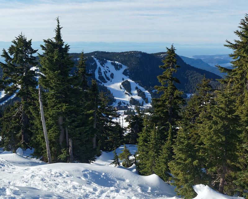 Hollyburn Mountain, 5 Dec 2020