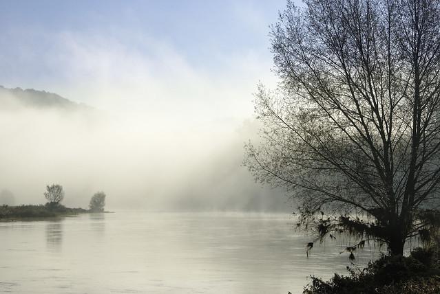 Weser (Lower Saxony)
