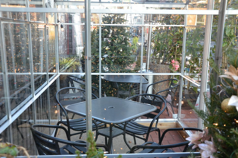 Caffé Gelato's greenhouses: outdoor dining with the comforts of inside