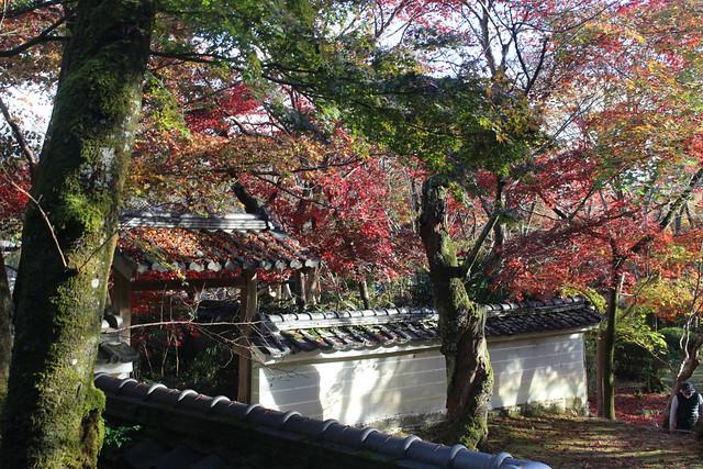 syojiji-gosyuin018